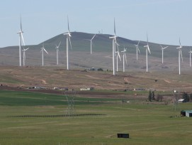 Windpark in Washington, Symbolbild (wikimedia.org, Walter Siegmund)