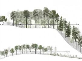 Profil des geplanten Streckenverlaufs des Baumwipfelpfades Neckertal. (Visualisierungen und Pläne: zvg)