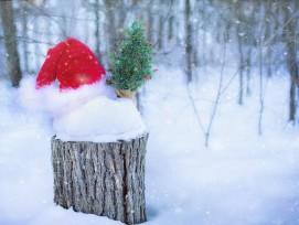 Weihnachtsmütze, Symbolbild.