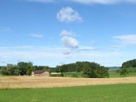 Einer der empfohlenen Standorte: Das Gebiet Chellen zwischen Zumikon und Maur.