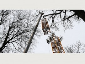 Auftakt zu einem 20 Jahre dauernden Waldexperiment: In Hölstein BL wird ein 50 Meter hoher Baukran installiert. Er erlaubt es den Wissenschaftler, in den Baumkronen wissenschaftliche Experimente durchzuführen.