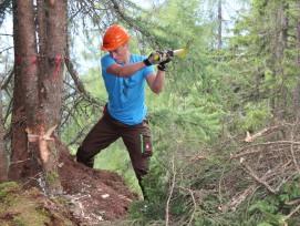 Arbeiten fürs Bergwaldprojekt.