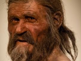 Nachbildung von Ötzi, Südtiroler Archäologiemuseum, Bozen