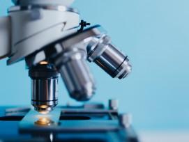 Unter dem Mikroskop verbergen sich winzigste aber spektakuläre Welten.