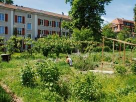 Auch die Basler Unigärten gehören zum  Netzwerk «Urban Agriculture Basel».