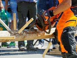 Schweizermeisterschaft Holzhauerei Wettkampf an der Forstmesse in Luzern.