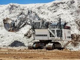 800-Tonnen-Mining-Bagger Liebherr R 9800