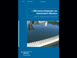 Mikroverunreinigungen aus kommunalem Abwasser