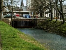 Vom Birsig geht laut der Untersuchung grössere Überschwemmungsgefahr aus als vom Rhein.