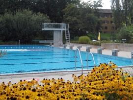 Wassertemperatur im Oktober: 25 Grad. Das Freibad in Zürich-Seebach.
