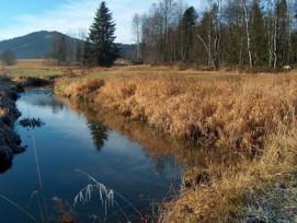 Lebensräume von nationaler Bedeutung (im Bild: Moorlandschaft bei Rothenthurm SZ) können neu als Karten im Internet betrachtet werden.