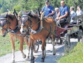 E-Kutsche in Braunwald GL