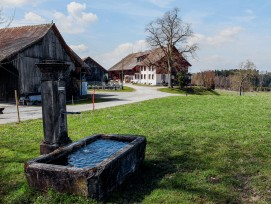 Weiler Chöll in Stettfurt