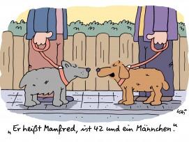 Cartoon von Kai Felmy