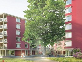 Visualisierung Neubau in Alterssiedlung Espenhof in Albisrieden