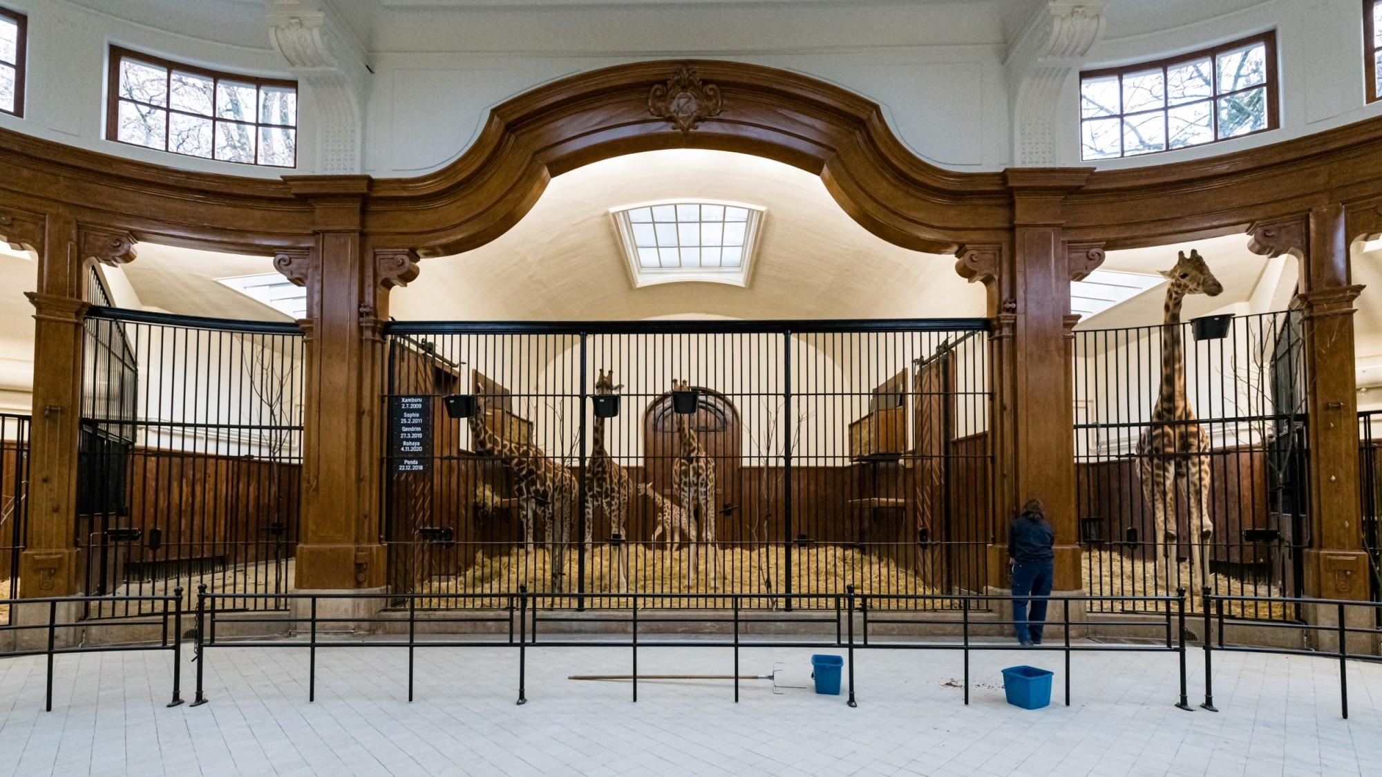 Antilopenhaus Basel